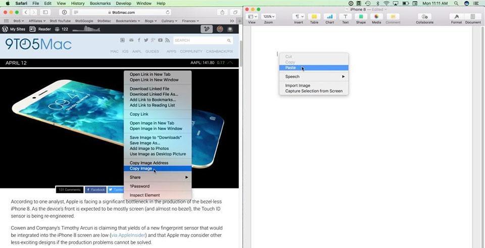 cách copy trên macbook